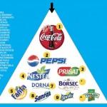 Brandurile si conexiunea cu clientii acestora